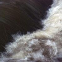 Water Action, Торнхилл