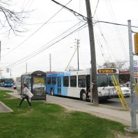 YRT Bus #99 on Yonge at Steeles, Торнхилл