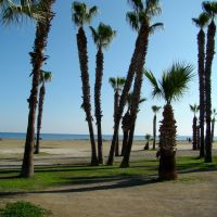 Larnaca Promenade, Athenon Avenue, Cyprus, Ларнака