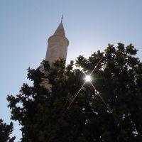 Larnaca, Ларнака