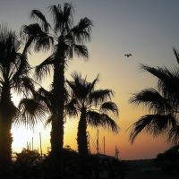Rasarit la Larnaca, Ларнака