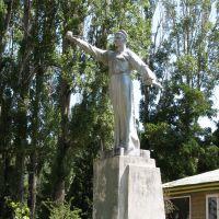 Памятник, Бостери