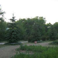 Иссык-Куль, панорама 12, Бостери