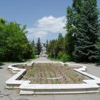Аллея в мемориальном музее Н.М.Пржевальского (июнь 2013г.), Пржевальск