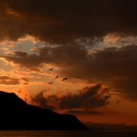 Рассвет в Рыбачьем. Крым, Рыбачье