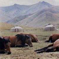 Kirgihizstan, Бордунский