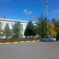 City Hall, Кант