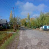 Пушкина/Куйбышева, Кант