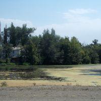 Озерцо, Фрунзе