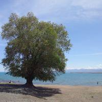 Beach at Balykchy, Lake Issyk-Kul, Балыкчи