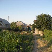 Houses, Беловодское