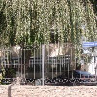 Паспортный стол и ОВИР, Кант