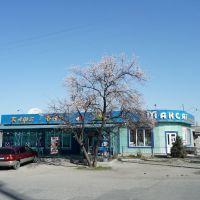 Oktyabrskaya/Panfilova, Кант