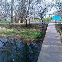 Bridge over the Chupra, Кант