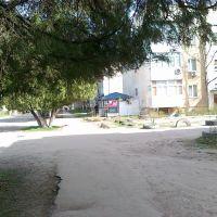 """Zhildoma"" district, Кант"