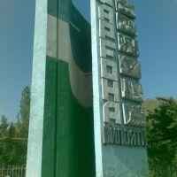 Ферганская область, Пульгон