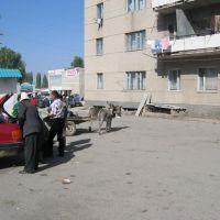 Talas near market, Талас