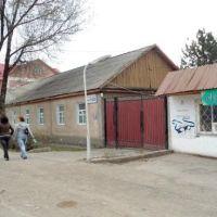 Киргизия. Токмак. Ул. Шамсинская 93, Токмак