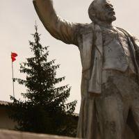 Viva le Lenin, Кочкорка