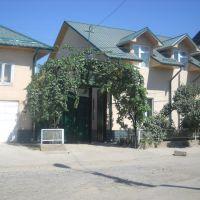 My house, Араван