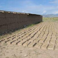 Land briquettes, Базар-Курган