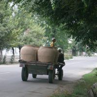 Kyrgyz-Jalal Abad, Джалал-Абад