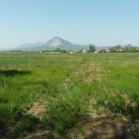 Поле 2012, Field, Карамык