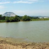 Панорама Пруд 15.06.2012 10.04 Утра. Panorama of Pond 15/06/2012 10.04 Morning, Карамык