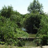 Река Джемуха 2012, River Dzhemuha, Карамык