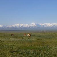 View from Sary-Tash, Kyrgyzstan, Сары-Таш