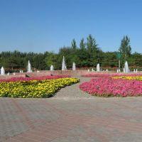 苗圃(nursery), Баотоу