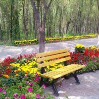 铁侠客走遍中国--2012年7月--包头风光, Баотоу