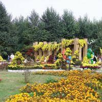 包头阿尔丁植物园, Баотоу