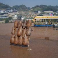 羊皮筏子, Ланьчжоу