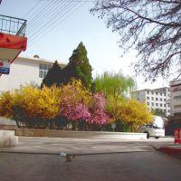 杨家桥学校--杜宝存, Ланьчжоу