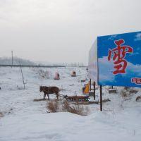 亚布力风光--马拉雪橇, Аншань