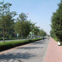 青年大街(Youth Street), Ляоян