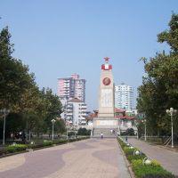 武汉五四年抗洪纪念碑, Ухань