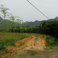 当年的乌溪江电站工地职工医院所在地,现在已经交还给大自然了, Иянг