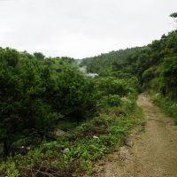 小路尽头的山坳就是我们当年的学校 - 水电十二局职工子弟学校,现在已是一片橘园, Иянг
