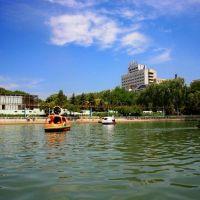 公园(by xingchun), Кайфенг