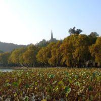Pagoda next to the West Lake, Ханчоу