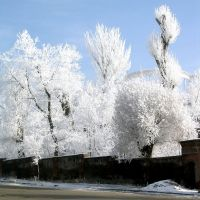 Gorki Park., Гюмри