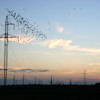 Закат в Белоозерске. Высоковольтные линии/Sunset over Industrial Landscape, Белоозерск