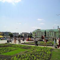 Площадь (The Square), Береза