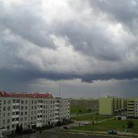 Тучи над Северным городком (Rain clouds over Severny Gorodok), Береза