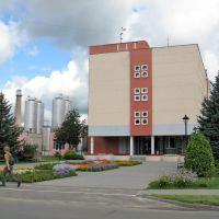 Берёзовский сыродельный комбинат (Bereza cheese making plant), Береза