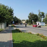 Комсомольская улица (Komsomolskaya sreet), Береза