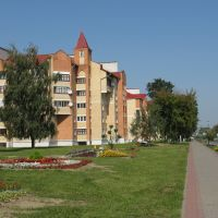 Дом 108а по ул. Ленина (108a, Lenin str.), Береза