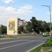 112-й дом по ул. Ленина (112, Lenin str.), Береза